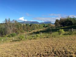 ที่ดินเขาค้อ ที่ดินสวยมาก ในโครงการฟอเรสท์ฮิลล์ 2 ขนาด 399.1 ตรว.