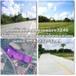 ขายที่ดินติดถนนทางหลวงแผ่นดิน3246 พนัสนิคม-เกาะโพธิ์ ใกล้ถนนทางหลวงเศรษฐกิจ331 ใกล้ถนนวงแหวนเลี่ยงเมืองพนัสนิคม