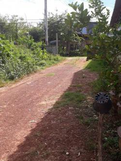 ขายที่ดิน ทำเลงาม เหมาะสำหรับสร้างบ้านอยู่อาศัย เนื้อที 110 ตร.วา
