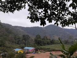 ขายที่ 2 ไร่ พร้อมบ้าน 3 หลัง กาญจนบุรี