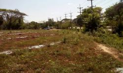 ขายที่ดิน ติดถนนหลัก 4 เลน สกลนคร-อุดรธานี