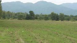 ขายที่ดิน สวย ธรรมชาติ 3 งาน18 ตารางวา ราคา 7.5 แสนบาท อ.บ้านนา จ.นครนายก