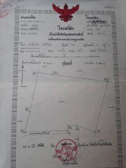 ที่ดินสวนลำใย อ.สารภี จ.เชียงใหม่ตั้งอยู่ด้านหลังสมาคมข้าราชการแห่งประเทศไทย บ้านหนอกแฝก เหมาะสำหรับทำจัดสรร