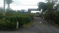 ขายทีดินแปลงงามทำเลดี ติดถนนเมนหลัก คลอง15 รังสิต-นครนายก อ.องค์รักษ์ จ.นครนายก