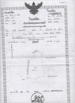 ขายที่ดิน 20 กว่าไร่ บ้านค้อ ท่าอุเทน นครพนม ไร่ละ 4 แสนบาท