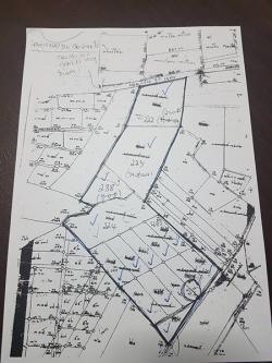 ขายที่ดิน 137 ไร่ นิคมลำนารายณ์ ชัยบาดาล ถนน 2 ด้าน ไฟ 3 เฟส ไร่ละ135,000บาท