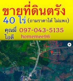ขายที่ดิน 40 ไร่ ที่ตรัง ตำแหน่ง ทางหลวงสายแผ่นดินสายกันตัง 403 ทำเลดีมาก โทร.0970435135