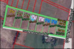 ที่ดินแบ่งล๊อคสวยๆ เริ่มต้นที่ล๊อคละ 180,000 บาท หนองหญ้าไซ จ.สุพรรณบุรี ฟรีค่าโอน ค่าภาษี ราคานี้รวมทุกอย่างแล้ว