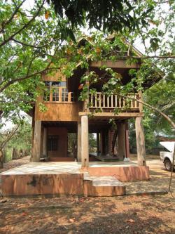 ขายที่ดินเปล่า พร้อมสิ่งปลูกสร้าง และต้นไม้สัก อ.เมือง จ.แพร่ บ้านไม้สัก 2ชั้น 1ห้องนอน 1ห้องน้ำ