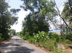 ขายที่ดิน 59 ตารางวา อำเภอเมือง จ.ระยอง อยู่ถนนท่าบรรทุก ตรงข้ามสนามกีฬาระยอง ใกล้ถนนสุขุมวิทประมาณ 100 เมตร
