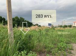 ขายที่ดินลาดกระบัง กทม. ที่ดิน 283 ตรว. ติดถนนเมน ซ.ลาดกระบัง38 ติดถนนซอย 2 ด้าน