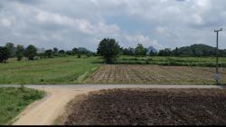 ขายที่ดิน 4 ไร่ 3 ตรว.(2ล้าน2แสนบาท) ต.พุแค อ.เฉลิมพระเกียรติ จ.สระบุรี
