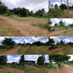 ขายที่ดิน ทำเลดี หลังหมู่บ้านวรการ 2 แหล่งชุมชน เมืองนครราชสีมา