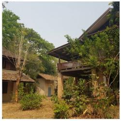 ขายถูก ที่ดิน 269 ตร.ว. พร้อมบ้านคลาสสิก  3 หลัง รวม 6 นอน 3 น้ำ หมู่บ้านป่างิ้ว เชียงราย ใกล้เมือง เดินทางสะดวก
