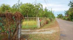 ขายที่ดิน อ.เมือง จ.สระแก้ว 46 ไร่ เป็นสวนยาง 5 ปี มะพร้าวน้ำหอม มะขามยักษ์ พร้อมบ้านพัก