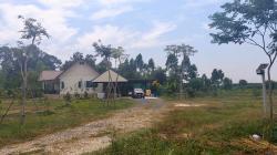 ขายบ้านสวนพร้อมอยู่อาศัย 15 ไร่ เจ้าของขายเอง อำเภอบ้านนา จังหวัดนครนายก โทร 0639528555