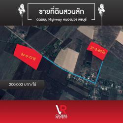 ขายที่ดินสวนสัก ติดถนน Highway หนองม่วง ลพบุรี