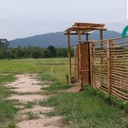 ด่วน ที่ดิน จังหวัดนครนายก ลดแล้วลดอีก 100 ตรว ใกล้โรงเรียนเตรียมทหารซอยวังน้ำสามัคคี