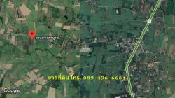 ขายที่ดินและต้นสัก (ขายรวมต้นสัก/แบ่งขายต้นสัก) ขนาด 4 ไร่ 88 ตร.ว. อ.วิเชียรบุรี จ.เพชรบูรณ์
