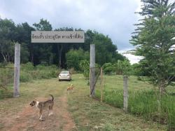 ขาย ที่ดิน พร้อมสวนลำไย (มีผลผลิตแล้ว) ขนาด 15 ไร่ 2 งาน น้ำไฟฟ้า และ เพื่อนบ้าน จังหวัดจันทบุรี