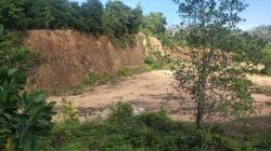 ขายที่ดิน 36ไร่ 2งาน 91.9ตารางวา อำเภอระแงะ  จังหวัดนราธิวาส