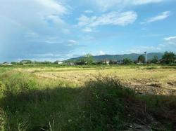 CR1ขายที่ดินแปลงสวยในเมืองเชียงรายเนื้อที่รวม31-3-17ไร่ที่ดินแปลงนี้ตั้งอยู่ในเขต ต.สันทราย อ.เมืองเชียงราย จ.เชียงราย ติดทางสาธาาณประโยชน์ที่เข้ามาจากทางหลวงสายเชียงราย-เทิง(1020)ประมาณ400เมตรใกล้ถนนบายพาสตัดใหม่ทางไปสนามบินแม่ฟ้าหลวงเชียงราย(5023)1กม.ใก