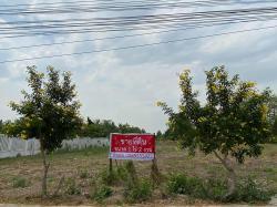 ขายที่ดินขนาด 1 ไร่ 2 งาน ใกล้ถนนราชพฤกษ์ ปากเกร็ด นนทบุรี โทร 0985535322