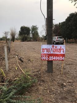 ขายที่ดินเปล่า 2แปลง บ้านหนองบัวใหญ่ ตรงข้ามการประปาจัตุรัส ชัยภูมิ