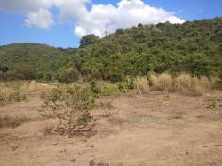 ขายด่วน ที่ดิน 1ไร่ สัตหีบ ชลบุรี ฮวงจุ้ยดีที่สุด ล้อมรอบด้วยภูเขาเขียวขจี 360 องศา หน้ามองเห็น ทะเลหาดดงตาล จำนวน1ไร่