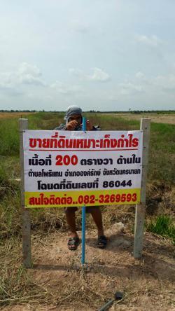 ขายที่ดินสำหรับเก็งกำไร หรือปลูกบ้านพักยามเกษียณ อำเภอองครักษ์ นครนายก โทร 0823269593