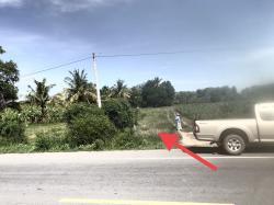 ขาย ที่ดิน 1 ไร่ ติดถนนหลวง 2 เลน ที่ดินพร้อมโอน ราคาถูก กำแพงแสน นครปฐม