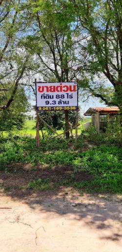 ขาย ที่ดิน สองแปลง ติด น.ส3ก บ่อพลอย กาญจนบุรี