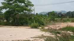 ขายที่ดินโฉนด 50 ตารางวา ครุฑแดง เมืองสระบุรี ติดถนนสาธารณะประโยชน์