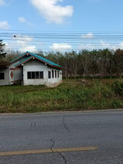 ขาย บ้านพร้อมที่ดิน นครศรีธรรมราช เนื้อที่ 2 ไร่ 98.7 ตรว. ริมถนนสายหลักช้าง-ทุ่งใหญ่ ใกล้แยกหนองดี