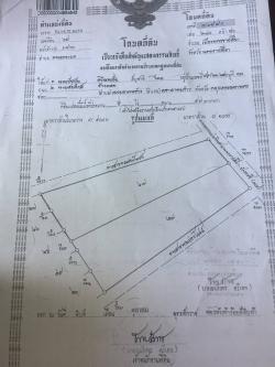 ขายที่ดิน ติดถนน304 ทางหลวงแผ่นดินสาย ราชสีมา-ปักธงชัย นครราชสีมา