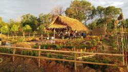 มีที่ดินแปลงงาม ปลูกบ้าน ท่ามกลางเสียงนกร้อง ท่ามกลางสีเขียว ของต้นไม้ใบหญ้า T.062-1574449
