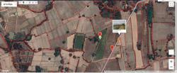 ขายที่ดิน จ.นครสวรรค์ อ.ลาดยาว ต.เนินขี้เหล็ก มีขนาด 56 ไร่ กับ 45 ไร่ เจ้าของขายเอง