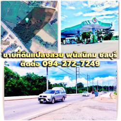 ขายที่ดินแปลงสวยบนถนนเศรษฐกิจตรงข้ามปั๊มนํ้ามัน PT หน้ากว้าง100เมตร ติดถนนทล.3246(พนัสนิคม-เกาะโพธิ์)