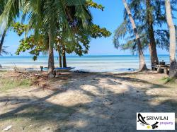 ขายที่ดินบนเกาะสมุย ติดทะเล ชายหาด ติดถนน ไฟฟ้า อินเทอร์เน็ต น้ำประปา พร้อม ขนาด 3ไร่ 1 งาน