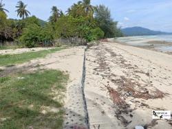 ขายที่ดินบนเกาะสมุย 13ไร่ หน้าติดถนนคอนกรีต 100เมตร และติดทะเลชายหาด120เมตร ติดทะเลชาย2หาดสวยครับ