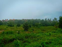 ขายที่ดินใกล้ถนนใหญ่อยู่แถวเชิงมนต์(เกาะสมุย)ห่างจากถนนใหญ่70เมตร ที่สวยมาก 10 ไร่