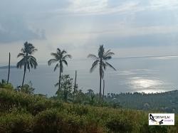 ขายที่ดินเกาะสมุย(เฉวงน้อย) 15ไร่2งาน57ตารางวา ที่สวยมากมองเห็นวิวทิวทัศน์ของทะเลและภูเขา