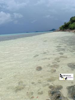 ขายที่ดิน24ไร่ ติดทะเลชายหาดพร้อมซีวิวหมู่เกาะน้อยใหญ่ในทะเลอ่าวไทยเกาะสมุย และวิวพระอาทิต ตก