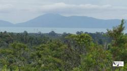 ขายที่ดินเกาะสมุย24ไร่ ขายไร่ละ2.5ล้านบาท ที่สวยตั้งอยู่ตรงแม่น้ำซอย4 จากถนนใหญ่เพียง7นาที ที่ซีวิวทะเลภูเขา