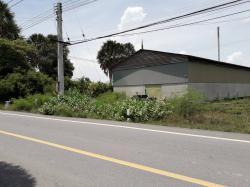 ขายที่ดิน 363 ตร.วา ติดถนน หน้ากว้าง 20 เมตร ลึก 70 เมตรพร้อมโกดังเนื้อที่ 500 ตร.ม  ถนนนครชัยศรี -ห้วยพลู (3233) ซอยลานแหลม10 ตำบลวัดละมุด  นครชัยศรี นครปฐม (ใกล้วัดลานแหลม และสนามแข่งรถไทยแลนด์เซอร์กิต)