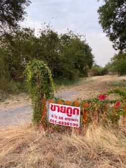 ขายที่ดิน บึงสามพัน 5 ไร่ 56 ตารางวา ติดถนน นํ้าไฟถึง อยู่ในที่ชุมชน ที่ถมแล้ว เจ้าของขายเอง