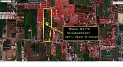 ขายด่วน ที่ดิน 36 ไร่ ใกล้หมู่บ้านพฤกษา3 ซอยวัดลาดปลาดุก บางคูรัด เหมาะทำจัดสรร