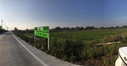 ขายที่ดินเปล่า บ้านใหญ่ นนทบุรี 7-1-22 ไร่ ใกล้โรงเรียนบ้านใหม่
