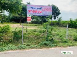 ขายที่ดินเปล่า 209 ตรว.ต.หนองขาว  อ.ท่าม่วง  จ.กาญจนบุรี