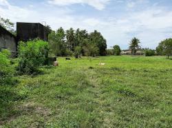 ขายที่ดินเปล่า 48.3 ตร.ว. ใกล้โรงงานสงขลาแคนนิง ซอยแผ่นดินไทย